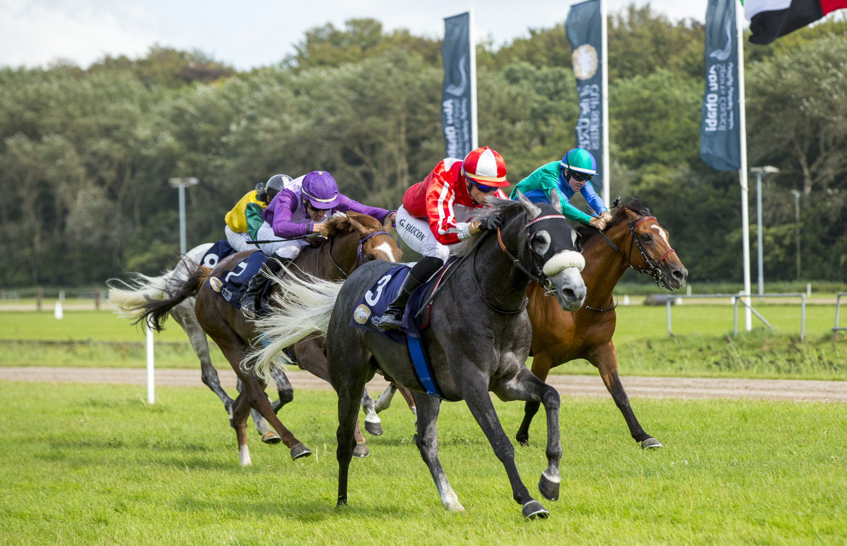 The President of the UAE Cup - Coupe D\'Europe des Chevaux Arabes