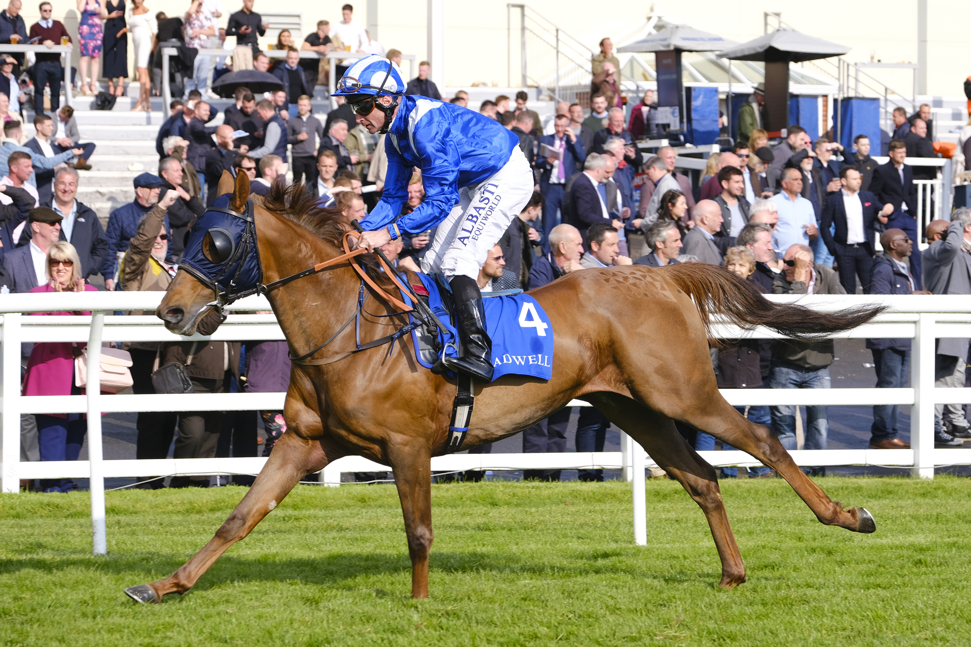 Shadwell Arabian Stallions Maiden Stakes
