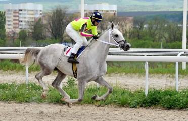 HARC race