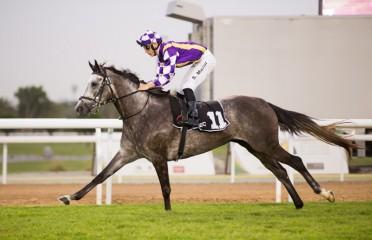 UAE Arabian Derby