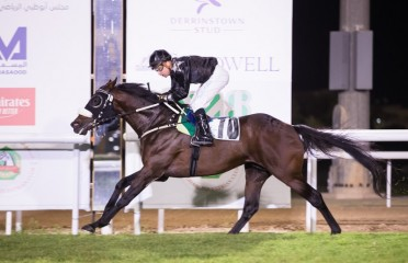 Wathba Stallions Cup For Private Owners Only