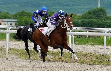 Open race