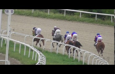 IFAHR Stakes
